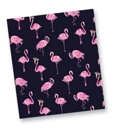 Flamingo Fiesta